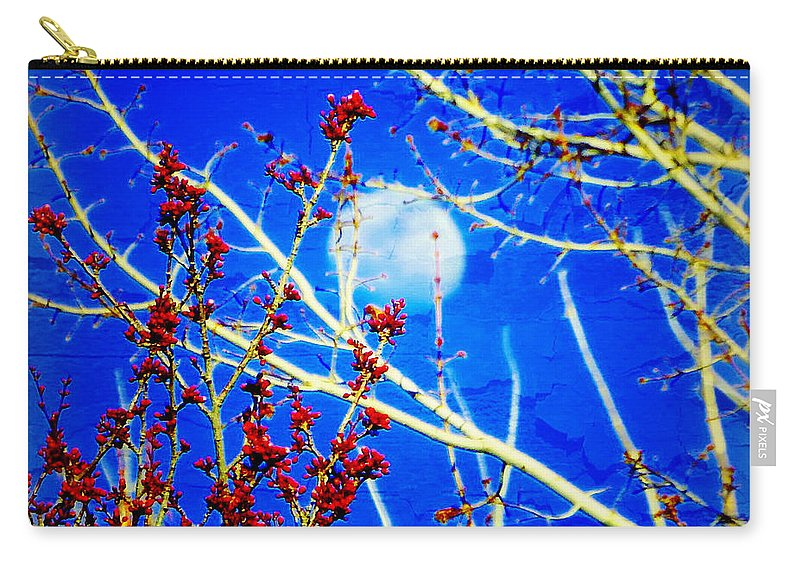 Acrylic Prints Carry-all Pouch featuring the photograph The Day The Moon Stayed Out All Day by Bobbee Rickard