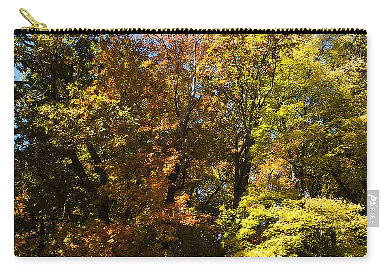 Dunes Carry-all Pouch featuring the photograph The Dune Trees by Verana Stark