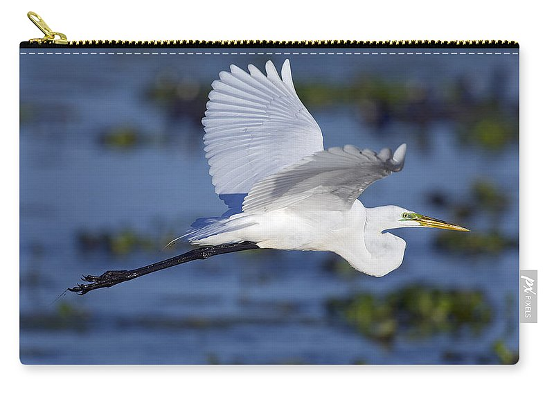 Elegant Carry-all Pouch featuring the photograph The Elegant Great Egret In Flight by Gary Langley