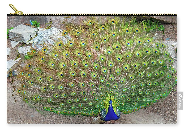 Banjiwayume Photography Carry-all Pouch featuring the photograph The Eyes Have It by Jonah Anderson