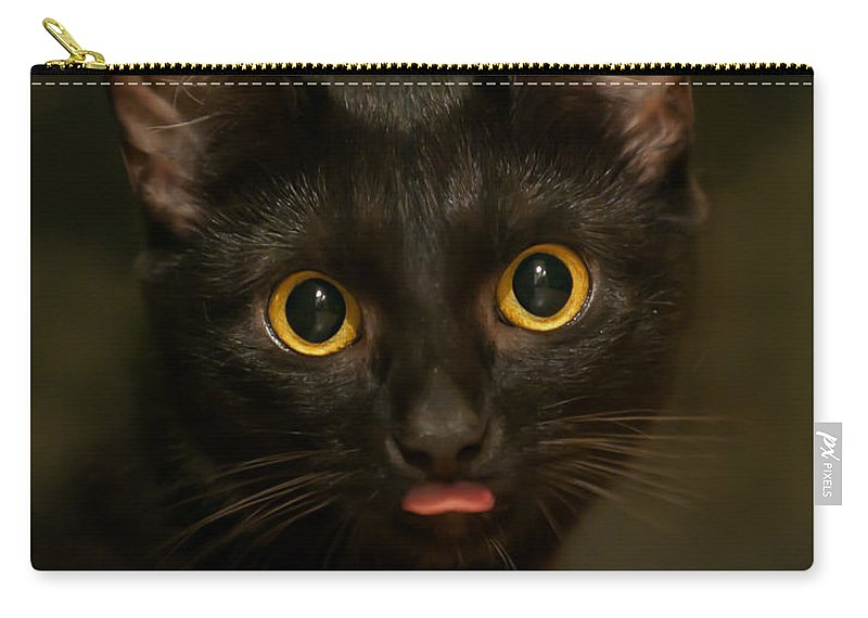 The Eyes Carry-all Pouch featuring the photograph The Eyes by Torbjorn Swenelius