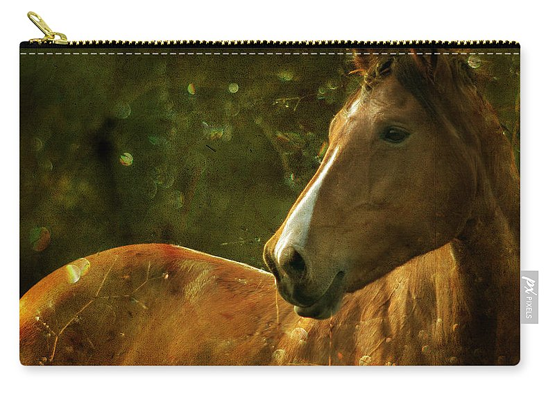 Horse Carry-all Pouch featuring the photograph The Fairytale Horse by Angel Ciesniarska