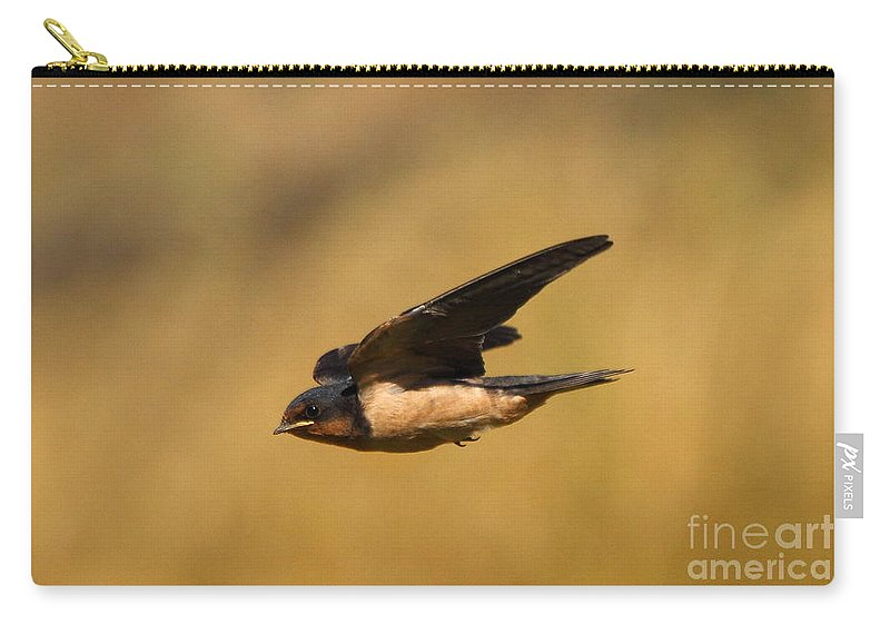 Animal Carry-all Pouch featuring the photograph First Swallow Of Spring by Robert Frederick