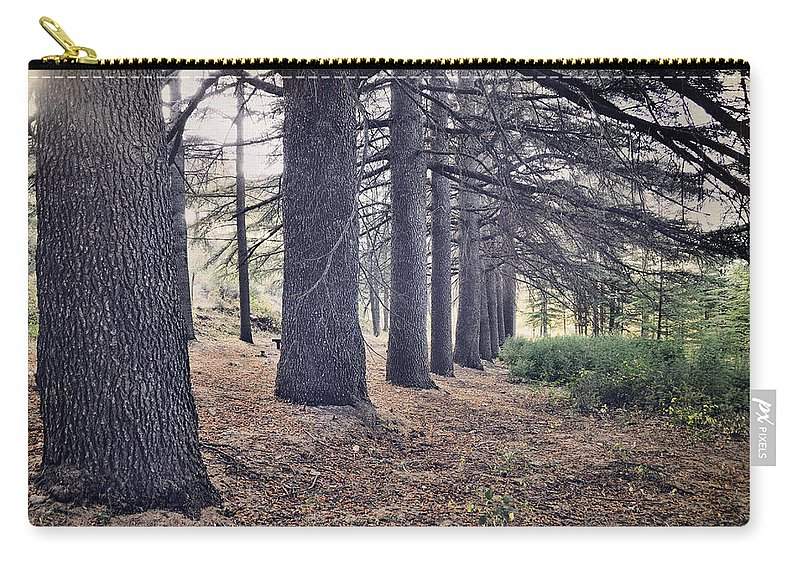 Woods Carry-all Pouch featuring the photograph The Forest Of A Thousand Stories by Guido Montanes Castillo