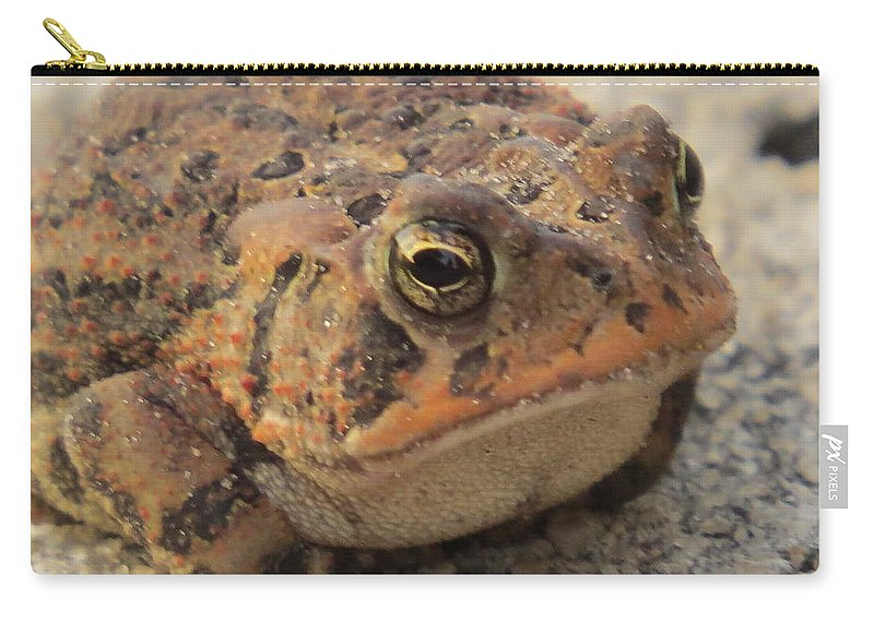 The Frog Carry-all Pouch featuring the photograph The Frog by Zina Stromberg