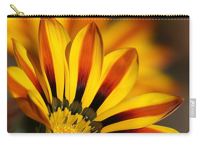 Gazanias Carry-all Pouch featuring the photograph The Gazanias by Ernie Echols