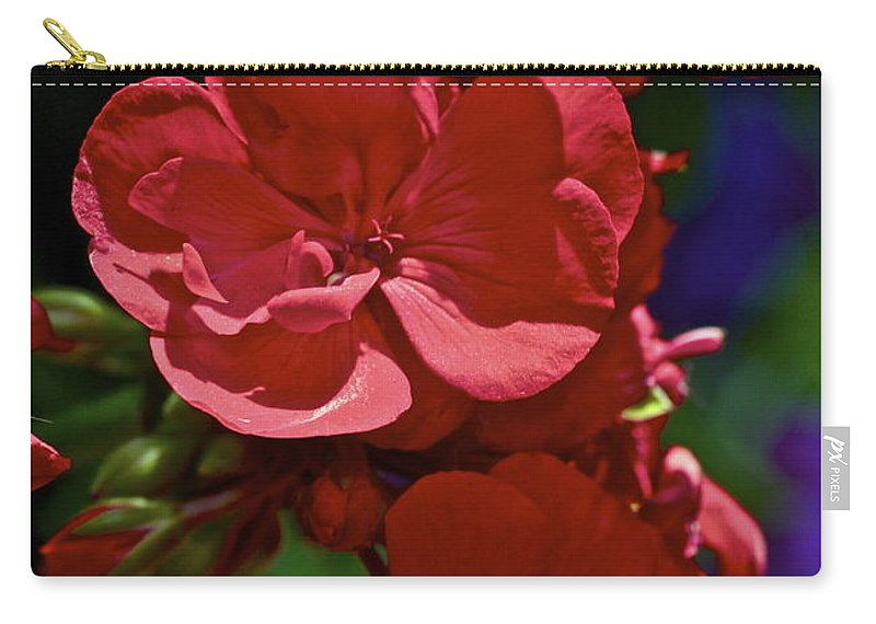 Geranium Carry-all Pouch featuring the photograph The Geraniums by Gwyn Newcombe
