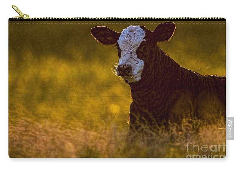 The Golden Calf Carry-all Pouch featuring the photograph The Golden Calf by Gary Holmes