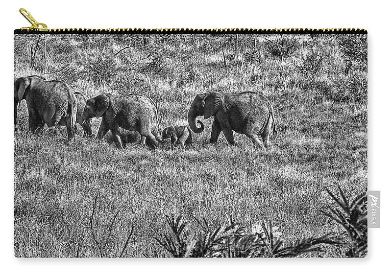 Elephant Bull Carry-all Pouch featuring the photograph The Great Trek V5 by Douglas Barnard