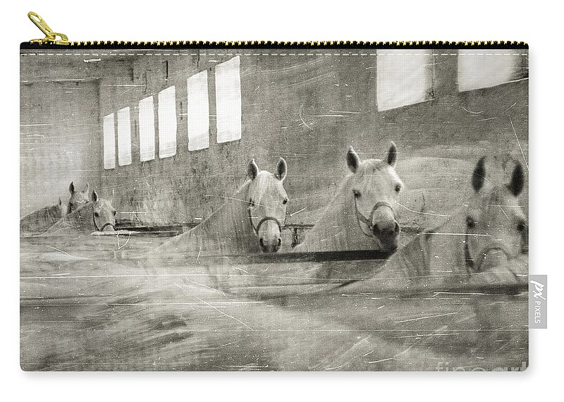 Grey Carry-all Pouch featuring the photograph The Grey Mares by Angel Ciesniarska