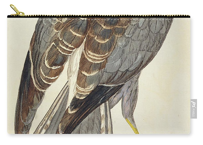 Bird Carry-all Pouch featuring the drawing Hen Harrier by Peter Paillou