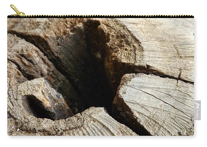 Tree Carry-all Pouch featuring the photograph The Hole by Clare Bevan