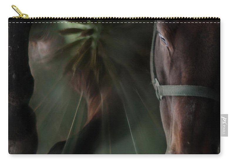 Abstract Carry-all Pouch featuring the photograph The Horse And The Dandelion by Angel Tarantella