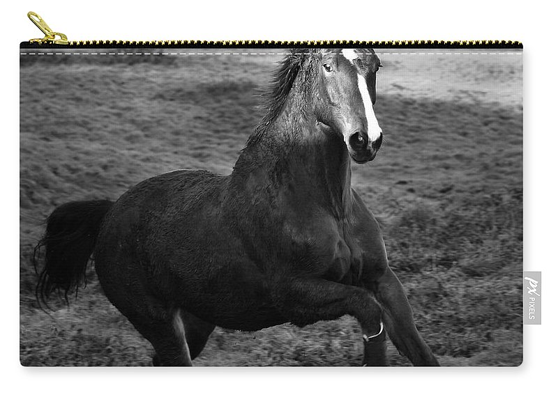 Horse Carry-all Pouch featuring the photograph The Horse by Angel Ciesniarska