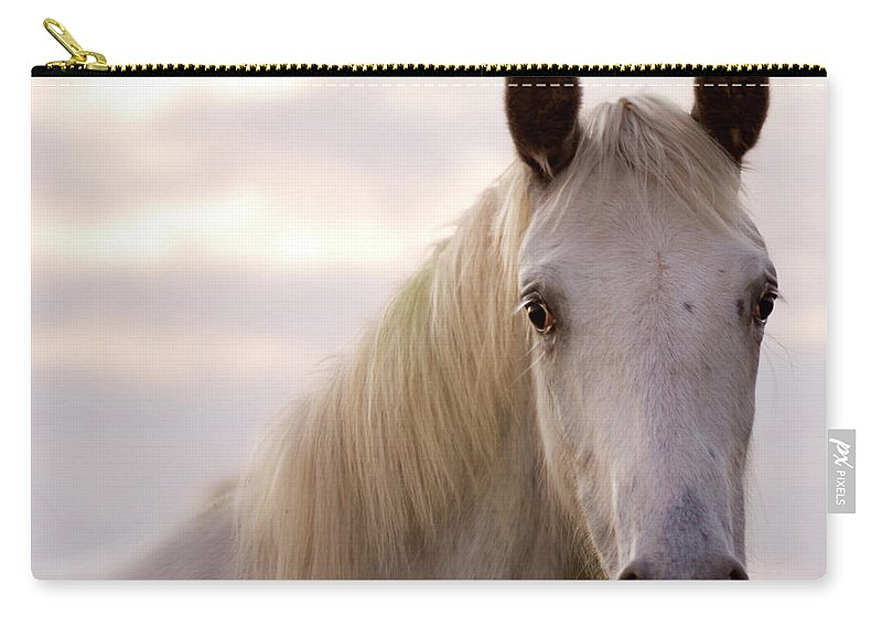 Horse Carry-all Pouch featuring the photograph The Horse In The Setting Sun by Angel Ciesniarska