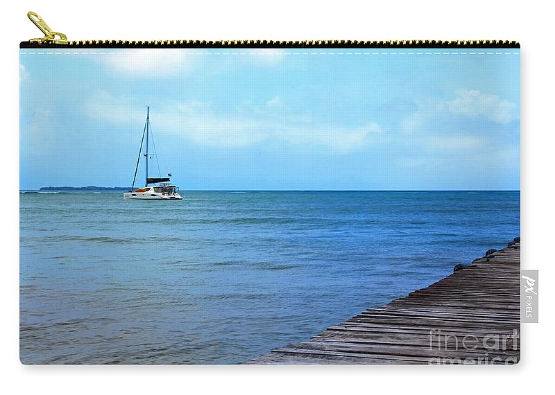 Panama Carry-all Pouch featuring the photograph The Ingwe Spirit by Bob Hislop