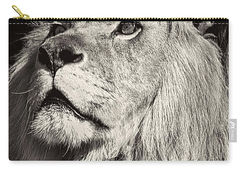 Lion Carry-all Pouch featuring the photograph The King by Marcia Colelli
