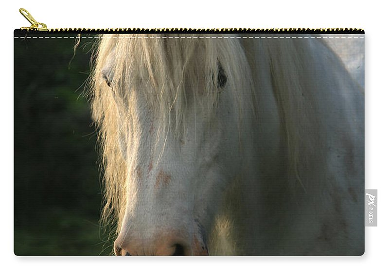 Unicorn Carry-all Pouch featuring the photograph The Light In The Mane by Angel Ciesniarska