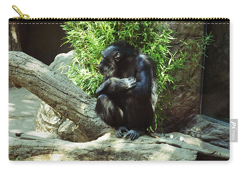 Chimpanzee Carry-all Pouch featuring the photograph The Lone Chimp by Holly Blunkall