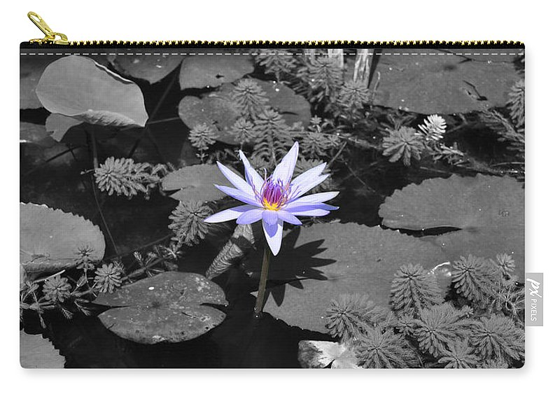 Flower Carry-all Pouch featuring the photograph The Lone Flower by Matthew Naiden
