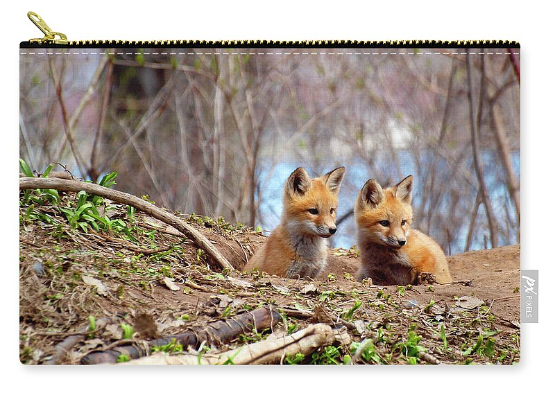 Red Foxes Carry-all Pouch featuring the photograph The Look by Thomas Young