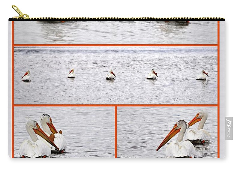 Birds Carry-all Pouch featuring the photograph The Lookers by AJ Schibig