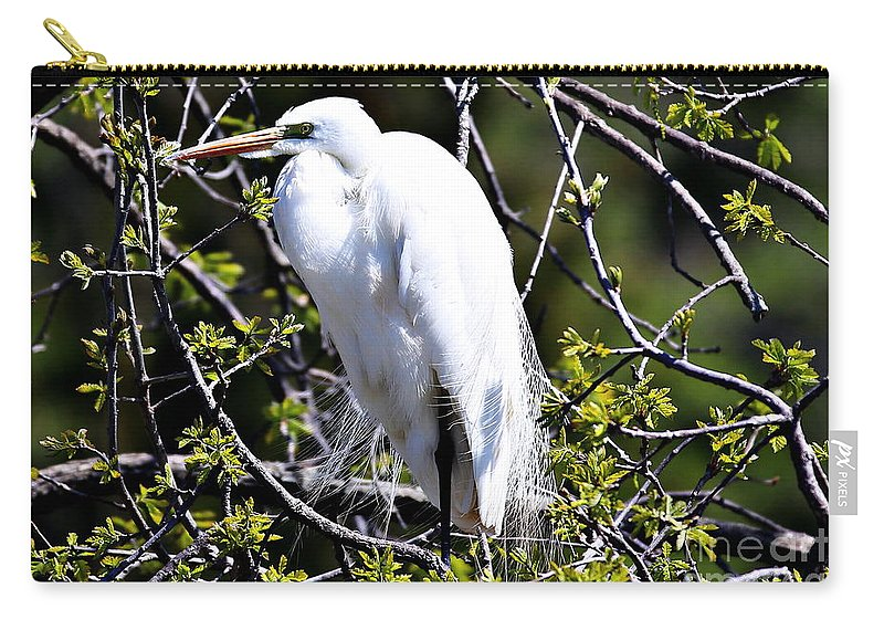 Great White Heron Carry-all Pouch featuring the photograph The Lookout by Elizabeth Winter