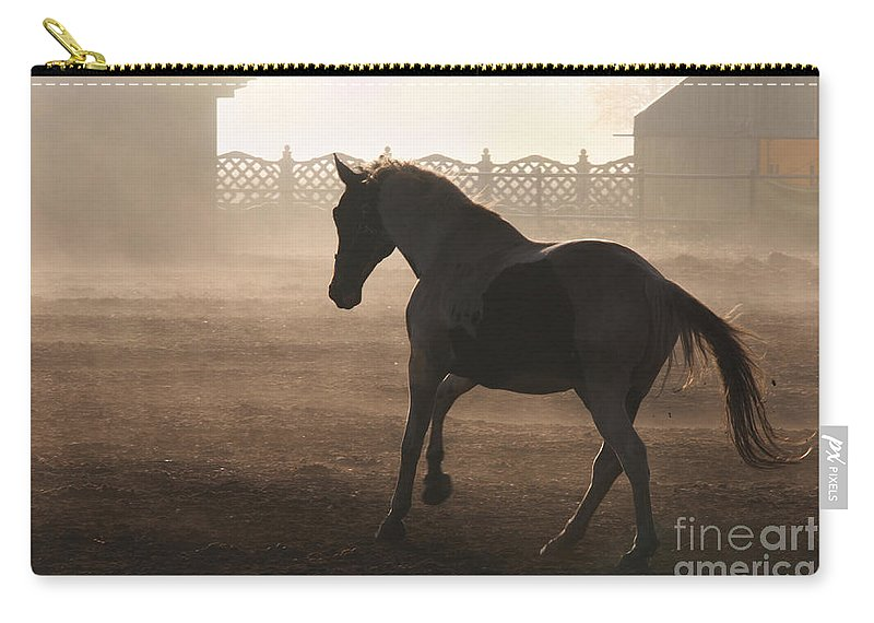 Horse Carry-all Pouch featuring the photograph The Morning Light by Angel Ciesniarska