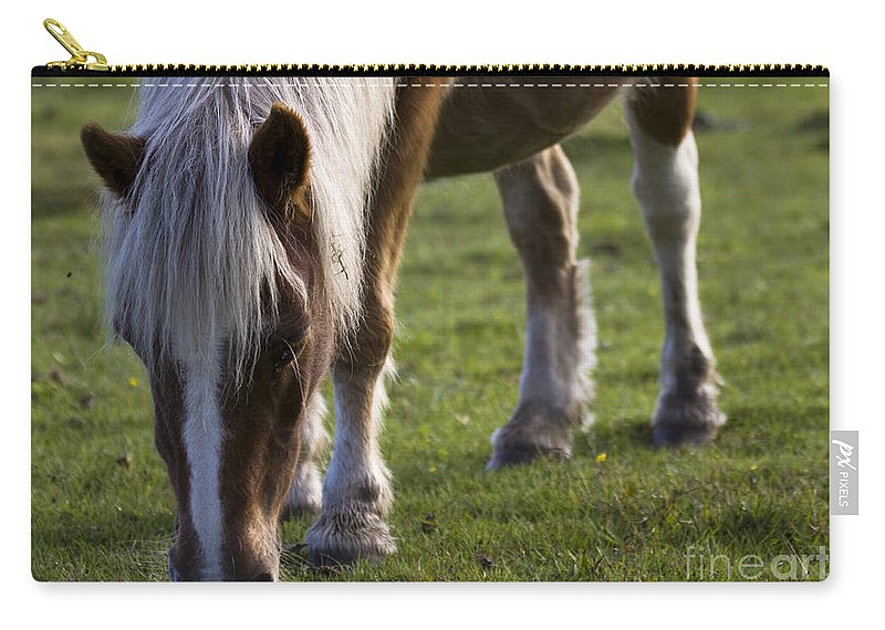Palomino Horse Carry-all Pouch featuring the photograph The New Forest Pony by Angel Tarantella