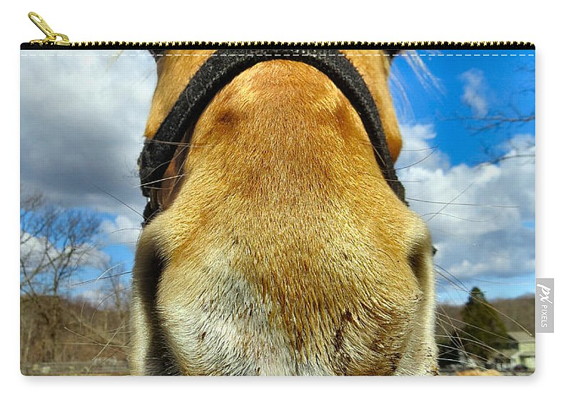 Horse Carry-all Pouch featuring the photograph The Nose Knows by Art Dingo
