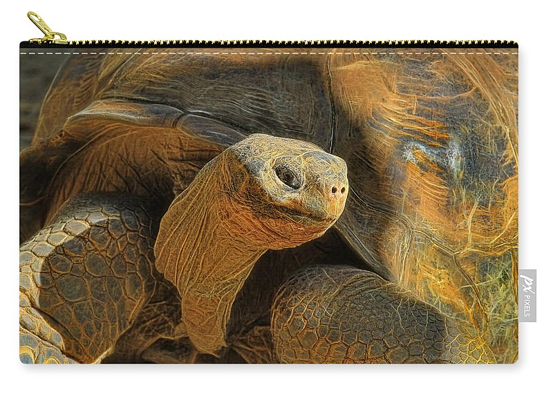 Tortoise Carry-all Pouch featuring the photograph The Old Guy by Deborah Benoit