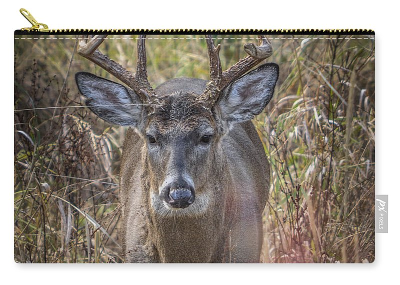 Deer Carry-all Pouch featuring the photograph The One You Look For by Ronald Grogan