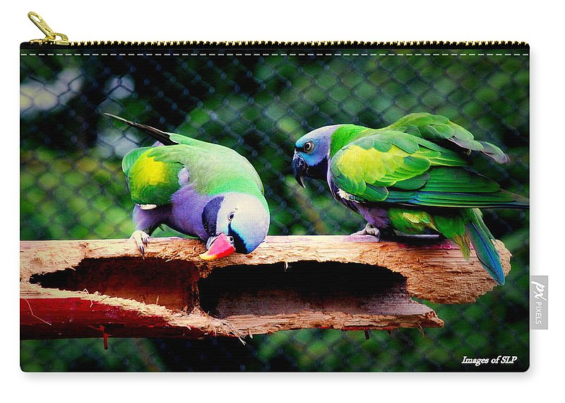 Bird Carry-all Pouch featuring the photograph The Pair by Scott Polley