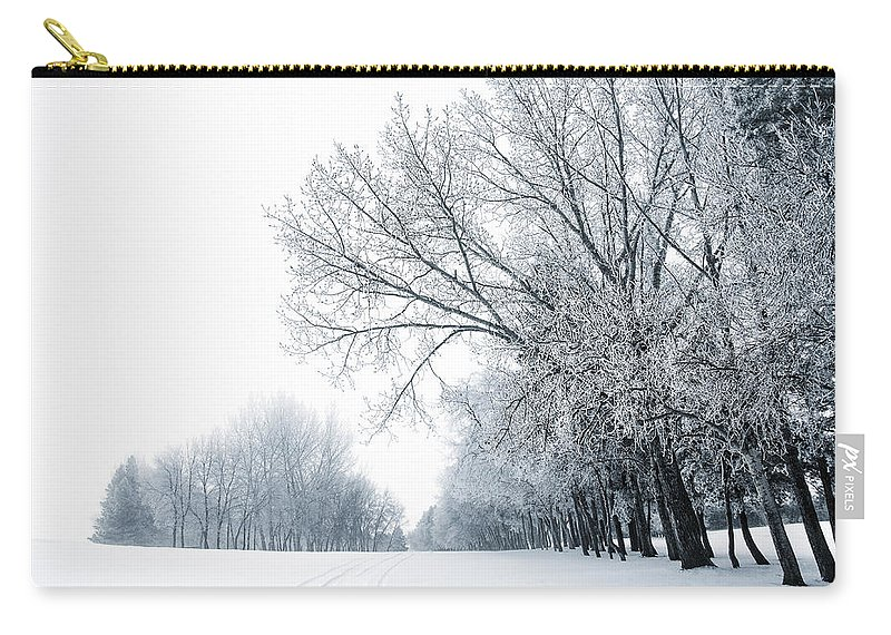 Winter Carry-all Pouch featuring the photograph The Path Of A Wandering Soul by Sandra Parlow