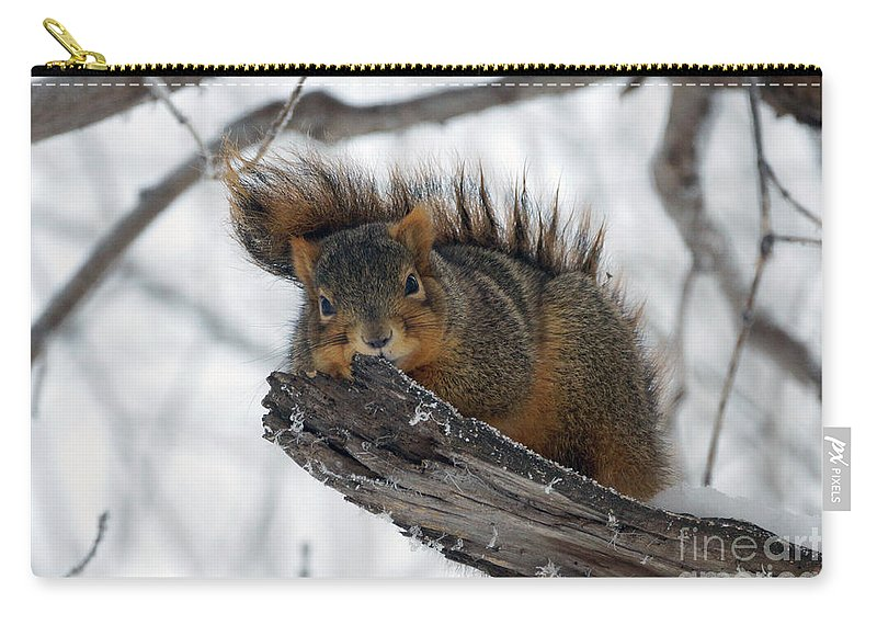Squirrel Carry-all Pouch featuring the photograph The Perch by Lori Tordsen