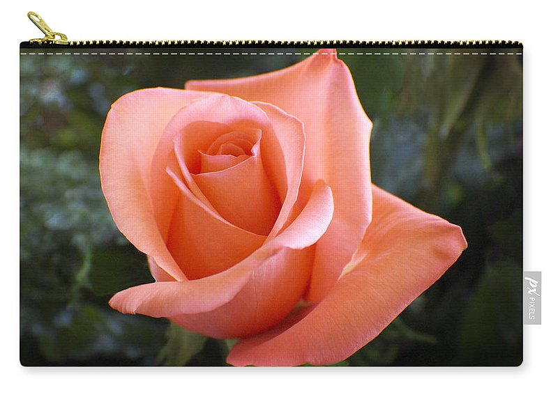Floral Carry-all Pouch featuring the photograph The Perfect Coral Rose by Kurt Van Wagner