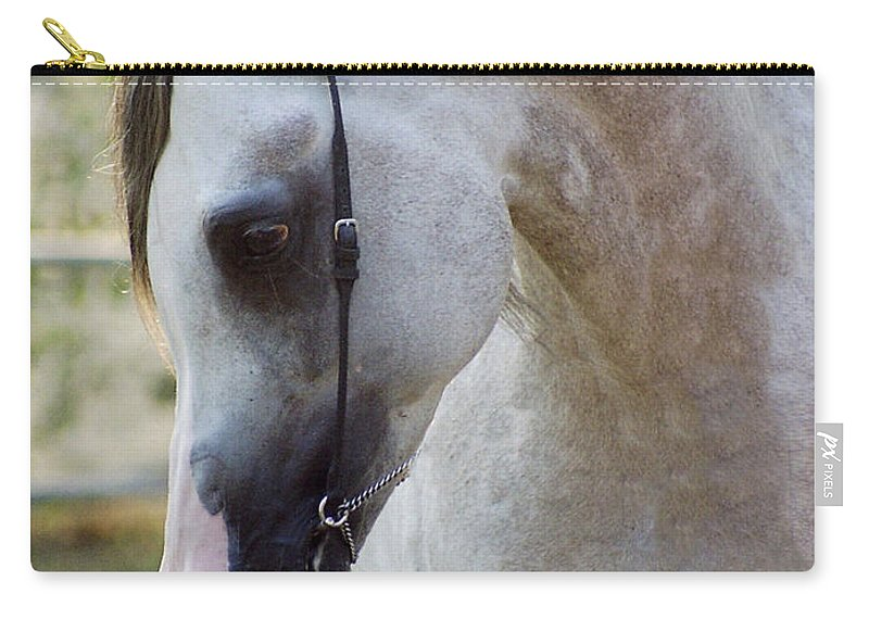 Horse Carry-all Pouch featuring the photograph The Polish Arabian Horse by Angel Ciesniarska