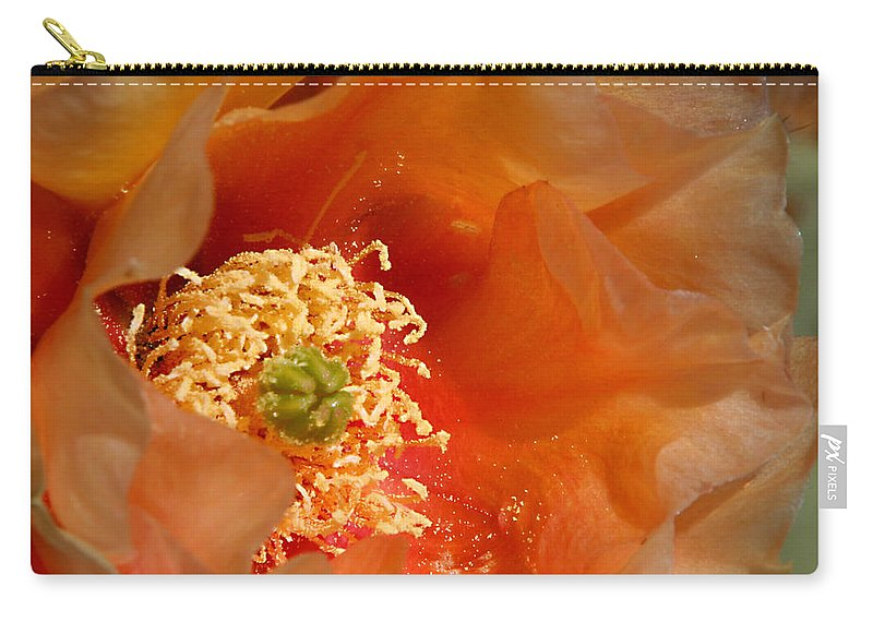 Flower Carry-all Pouch featuring the photograph The Prickly Pear World by Joe Kozlowski