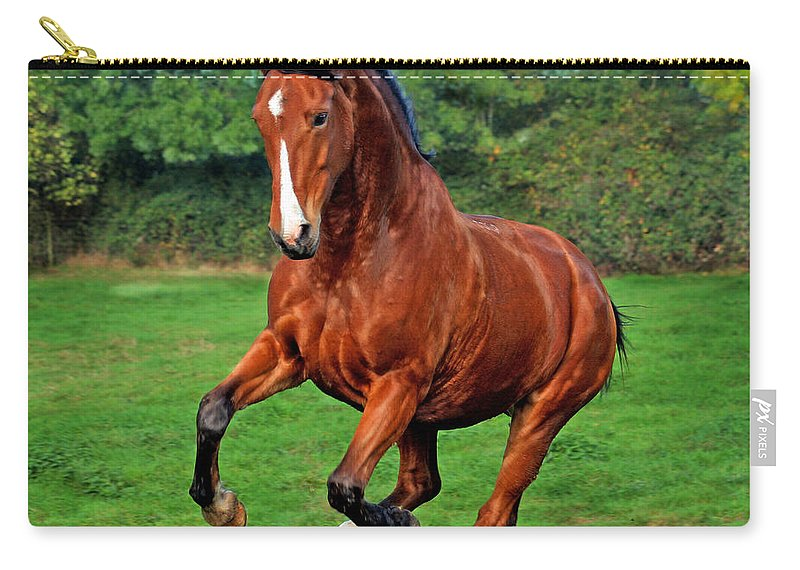 Horse Carry-all Pouch featuring the photograph The Pure Power by Angel Tarantella