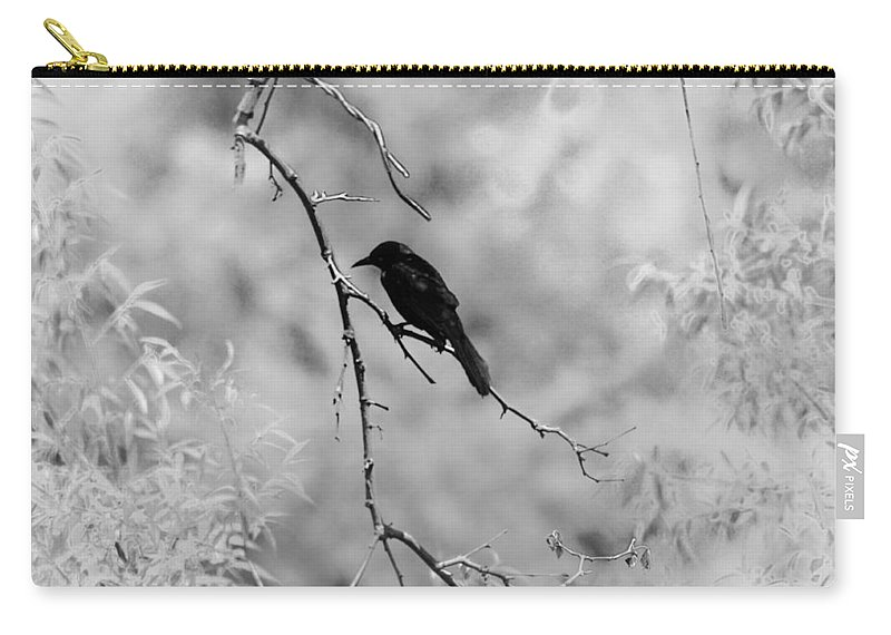 Raven Carry-all Pouch featuring the photograph The Raven by Bill Cannon