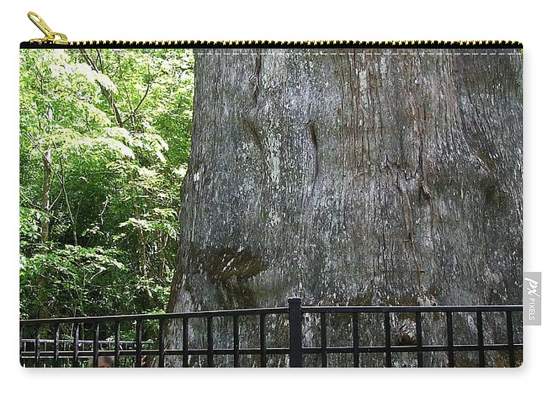 Immense Carry-all Pouch featuring the photograph The Senator by Susan Wyman