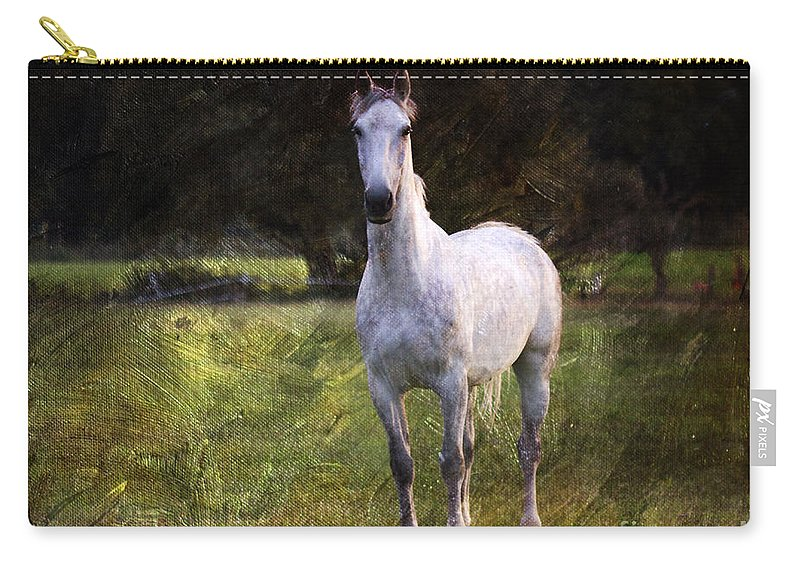 New Forest. White Stallion Carry-all Pouch featuring the photograph The Sentinel by Angel Ciesniarska