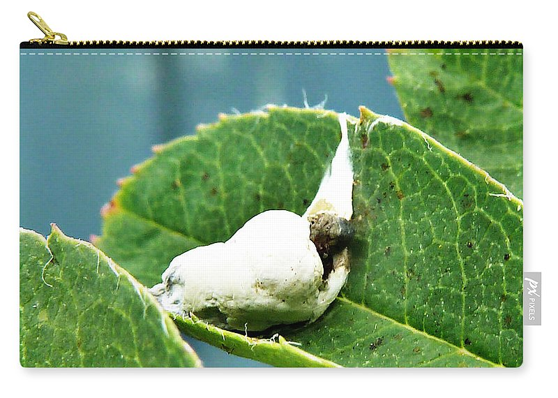 Cockatoo Carry-all Pouch featuring the photograph The Shy Cockatoo by Steve Taylor