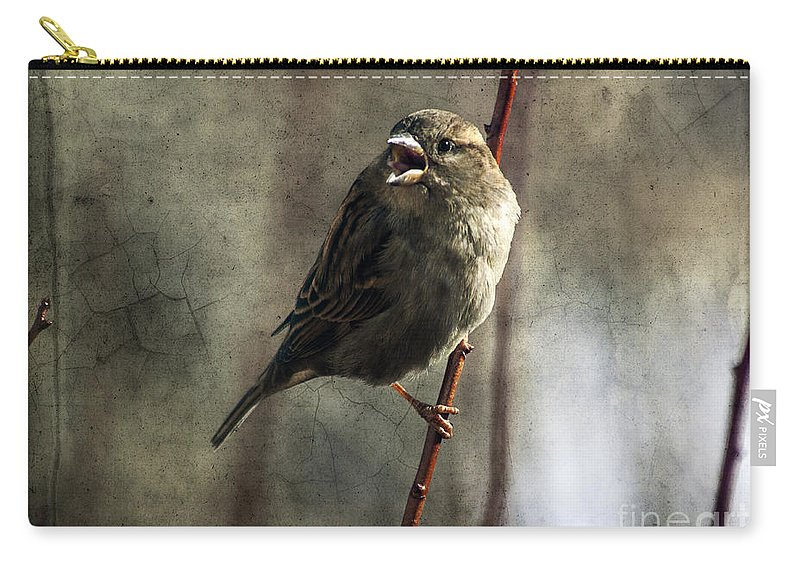 Sparrow Carry-all Pouch featuring the photograph The Singing Sparrow by Janice Pariza