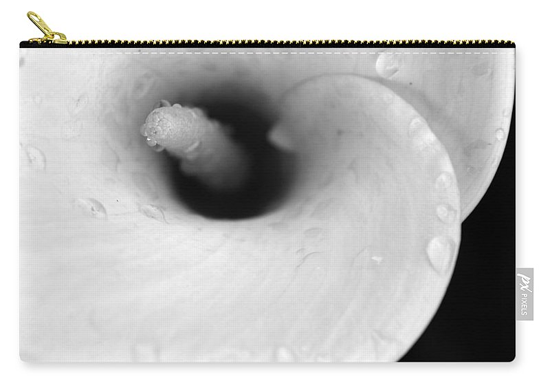 Nature Carry-all Pouch featuring the photograph The Slippery Spiral by Sebastiano Secondi