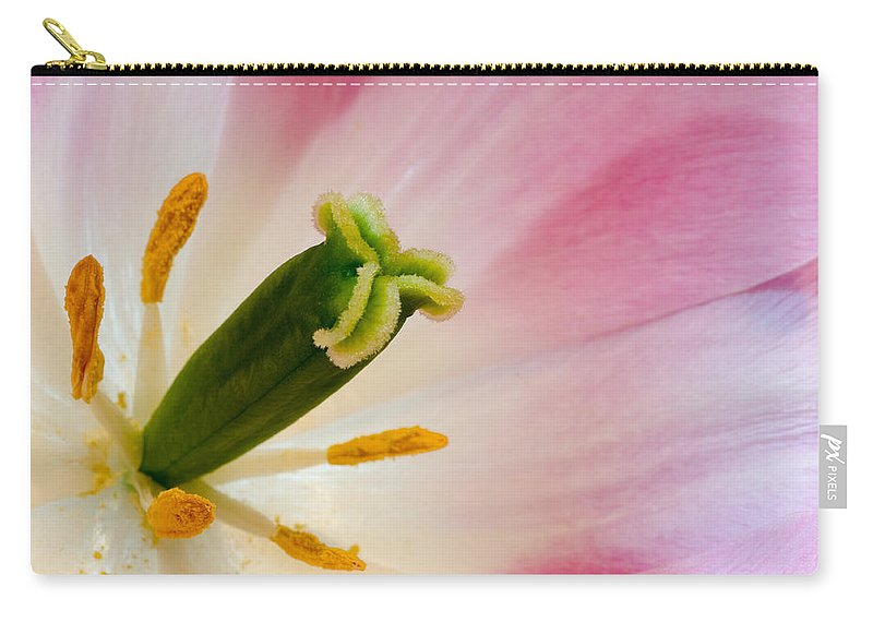 Tulip Carry-all Pouch featuring the photograph The Stamen by Georgette Grossman