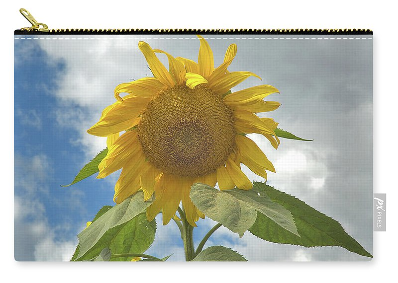 Flower Carry-all Pouch featuring the photograph The Sun Is Out by Arthur Fix