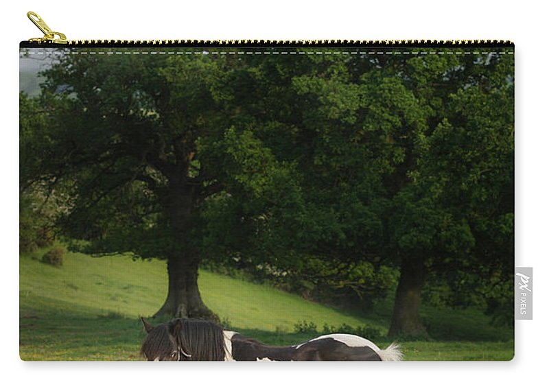 Horse Carry-all Pouch featuring the photograph The Sunny Meadow by Angel Ciesniarska