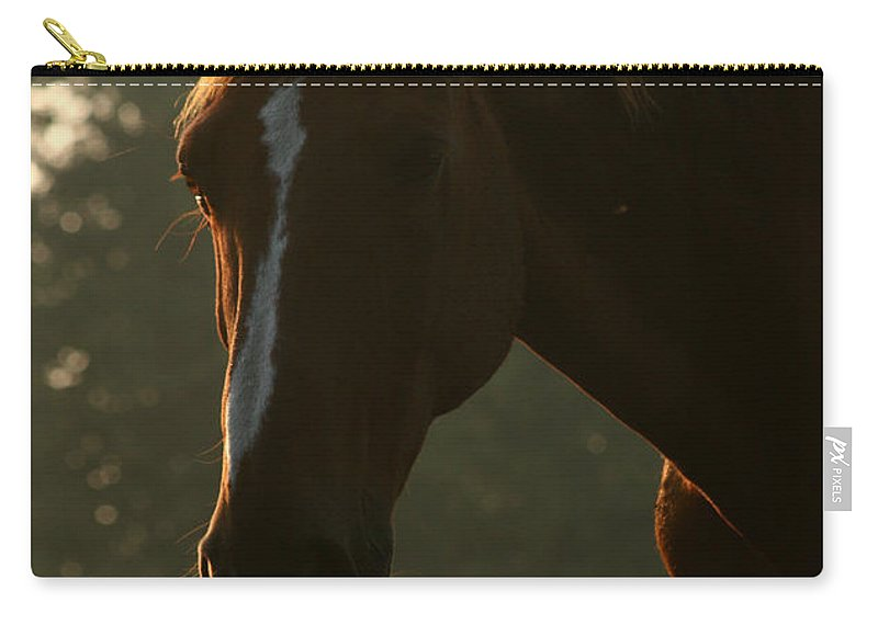 Horse Carry-all Pouch featuring the photograph The Sunset Portrait by Angel Ciesniarska
