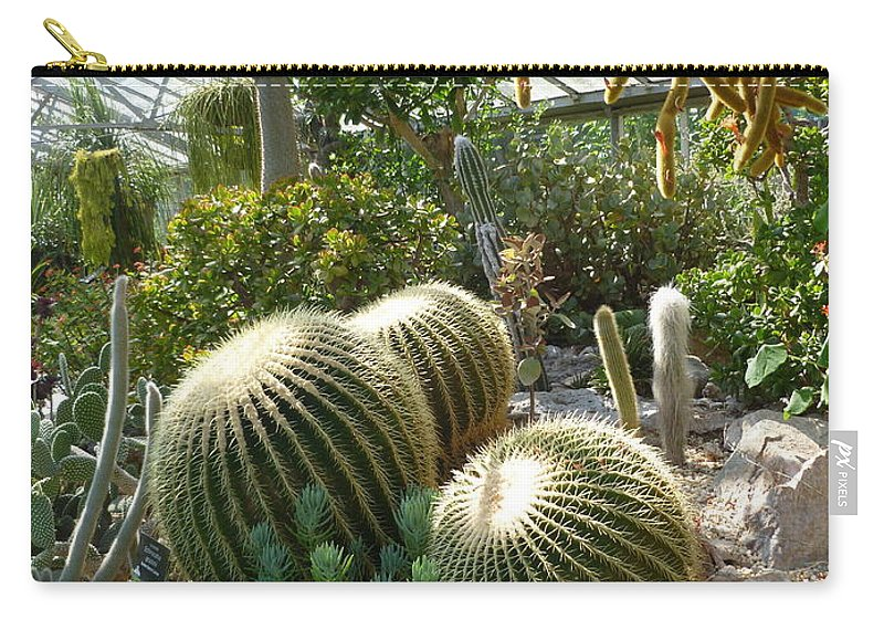 Cactus Carry-all Pouch featuring the photograph The Three Cacti by Lingfai Leung